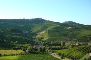 The views in Piemonte are even more beautiful than Tuscany. Each hillside is covered in vineyards growing Barbara, Dolcetto and Nebbiolo, the three main grapes of the region.